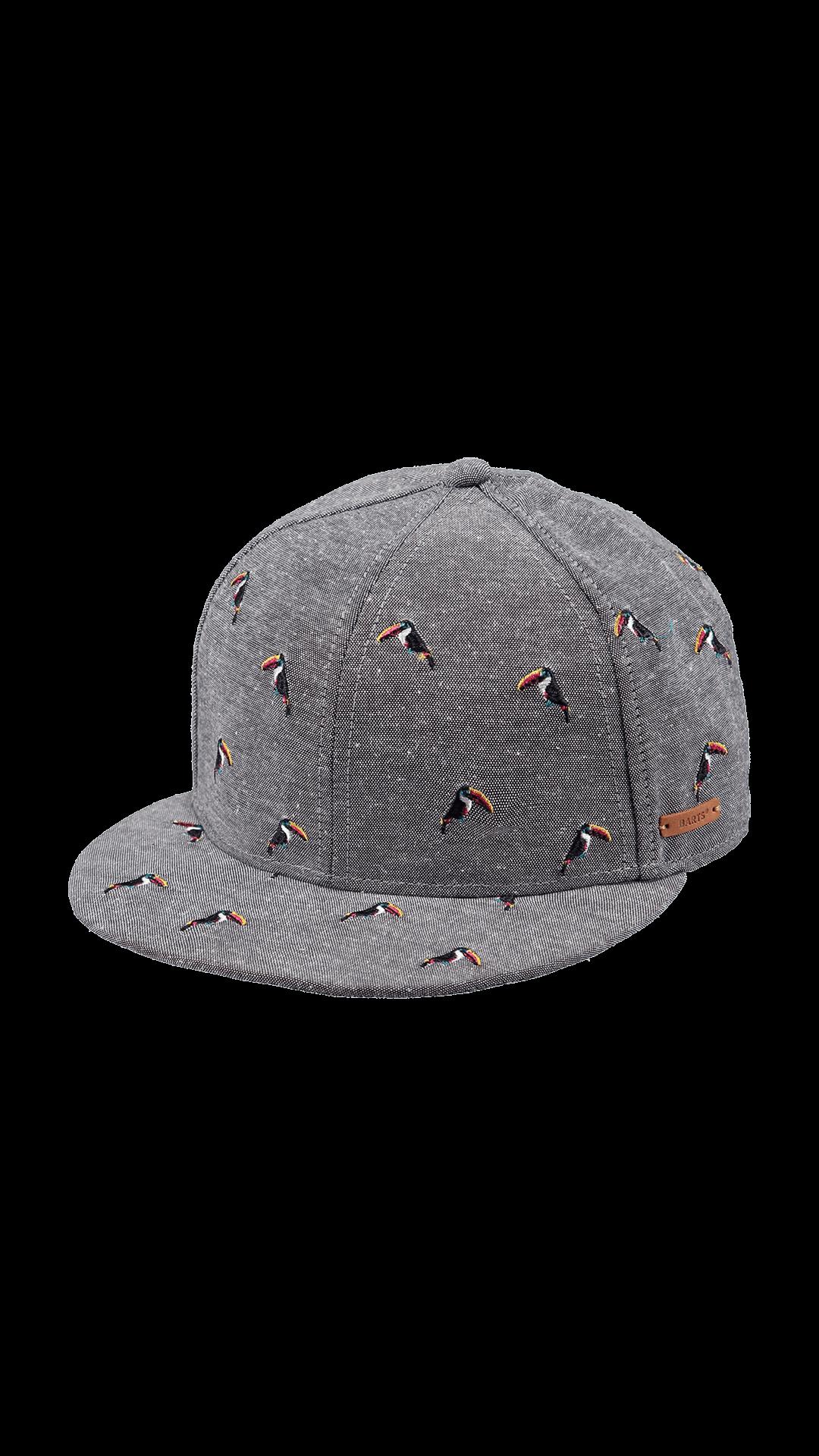 BARTS Pauk Cap-0